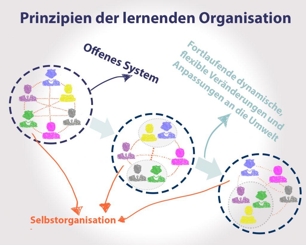 http://strategie-spektren.de/wp-content/uploads/2019/05/Prinzipien-der-lernenden-Organisation.jpg