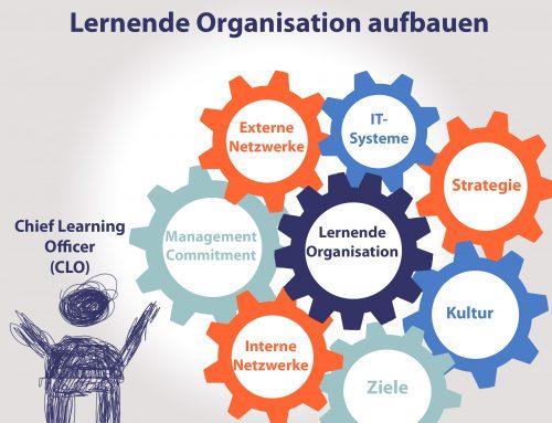 Wie baut man eine lernende Organisation auf?